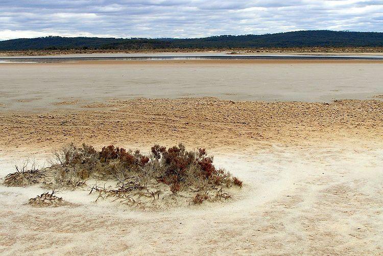 Salt flats du Lac Cowan, à l'ouest de Norseman - photo Travelling Australia