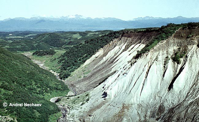 White pumice tuff of the Pleistocene caldera (beyond the edge NW of Krasheninnikov ) is surmounted by glacial deposits (clear brown) and pyroclastic deposits and soil dated from Holocene (dark brown). - Photo Andrei Nechaev / KSCNET