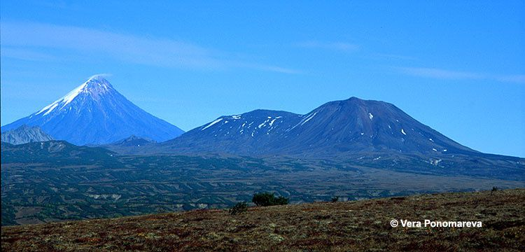 Kronotsky Reserve : left, Kronotsky volcano , on the right Krasheninnikov . - Photo Vera Ponomareva / KSCNET