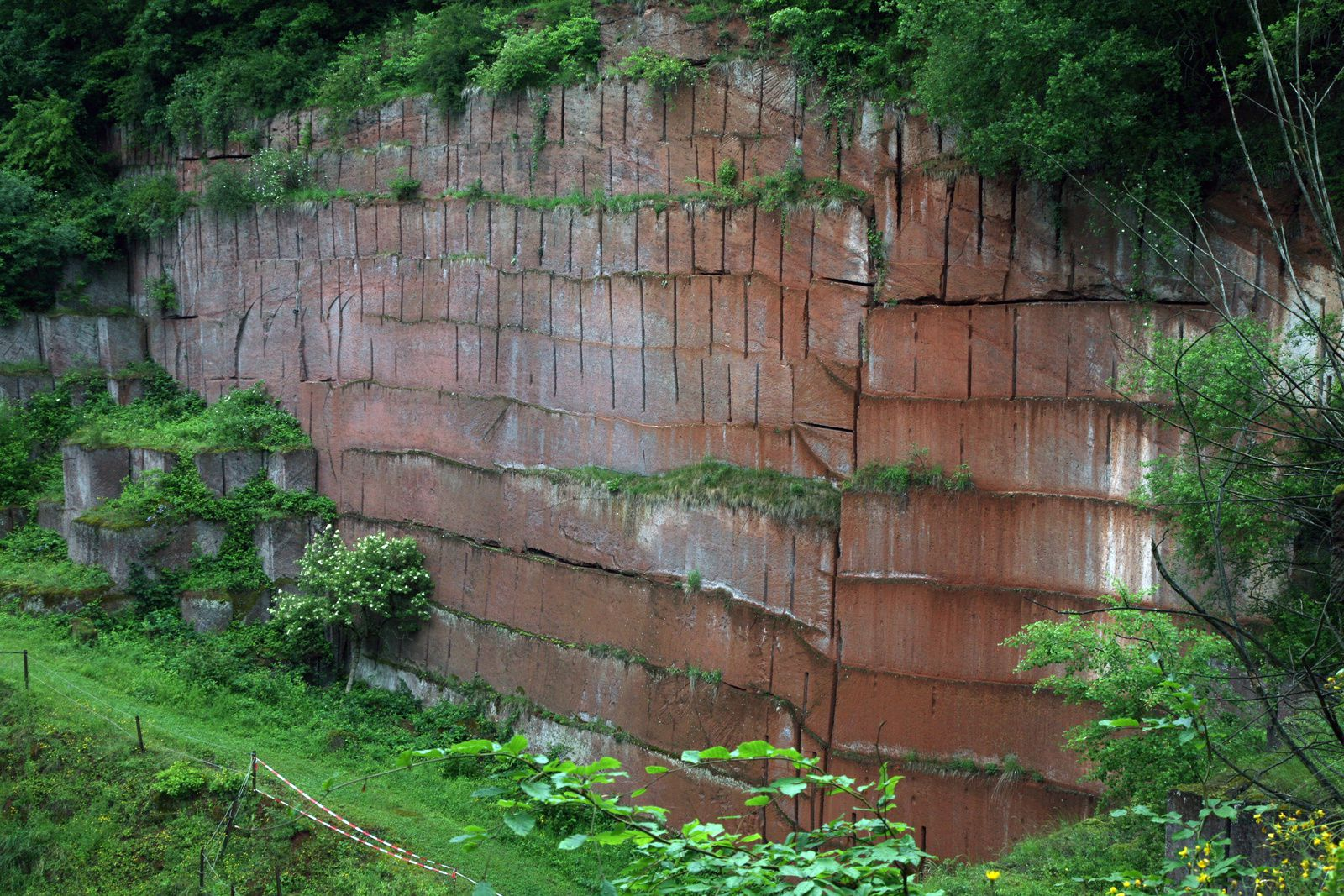 Vogelsberg - Michelnau's quarry - photo © Bernard Duyck 05.2014