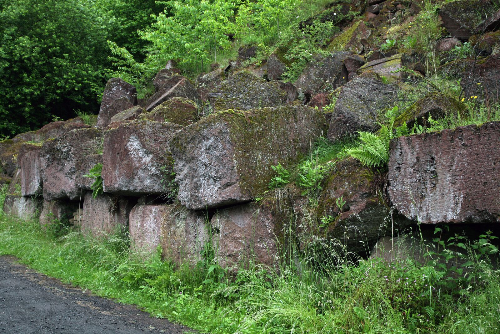Vogelsberg - tuff blocks to the parking entrance - Photo © Bernard Duyck 05.2014