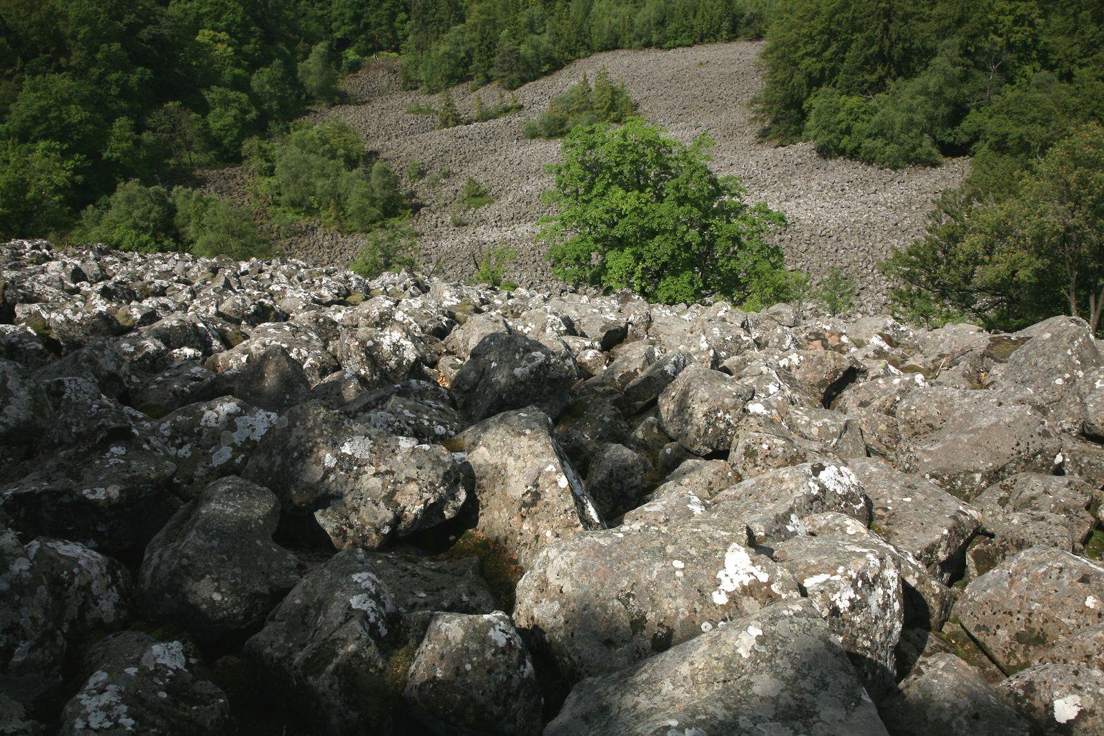 Schafstein - la mer de blocs basaltiques - photo © Bernard Duyck 05.2014
