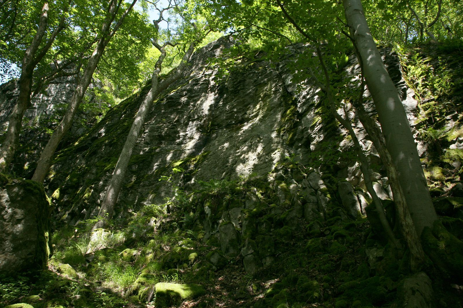 Gangolfsberg - the mass of basalt which houses the Teufelskeller - Photo © Bernard Duyck 05.2014