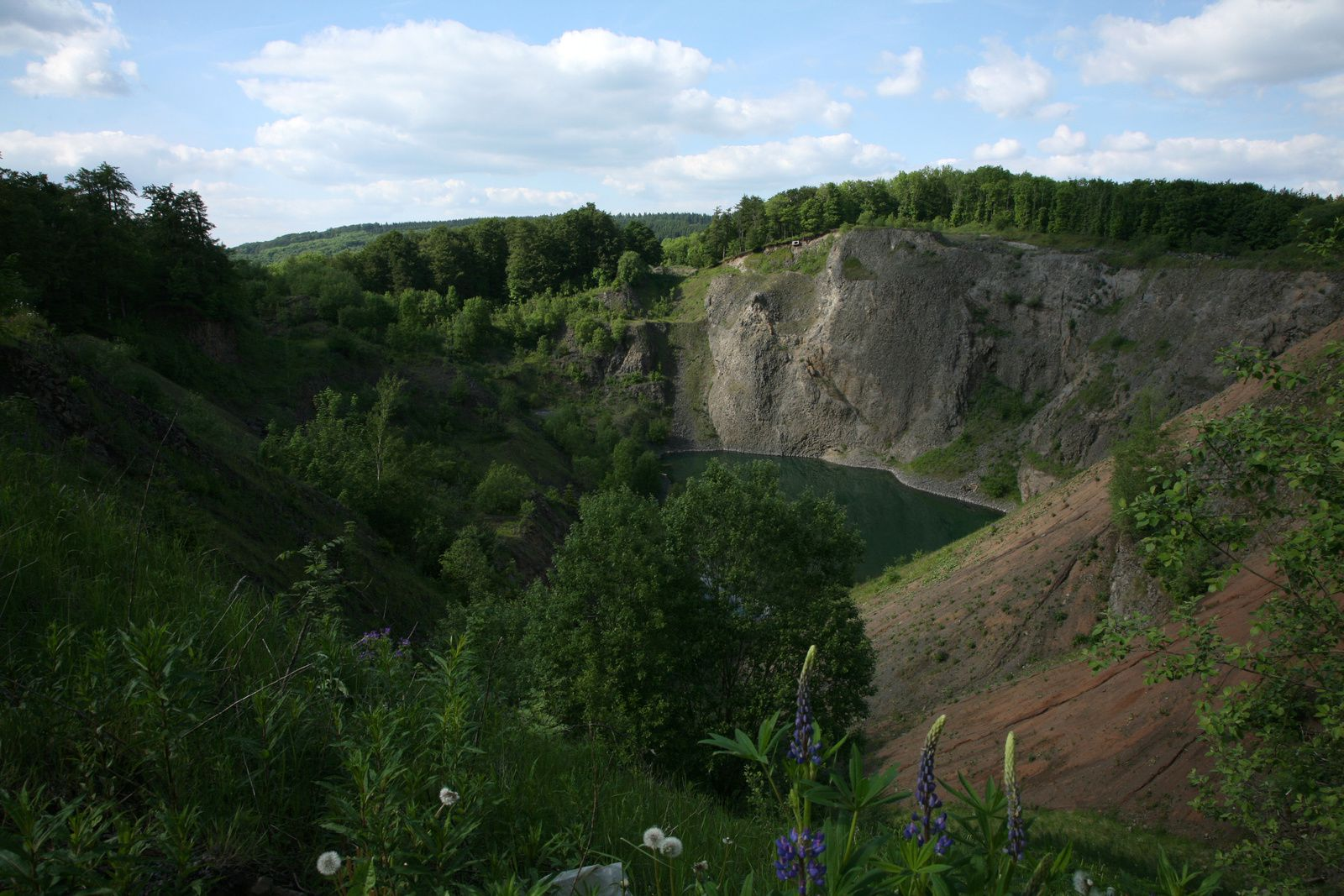 """Unnamed"" quarry in Scharzenberg - photo © Bernard Duyck 05.2014"