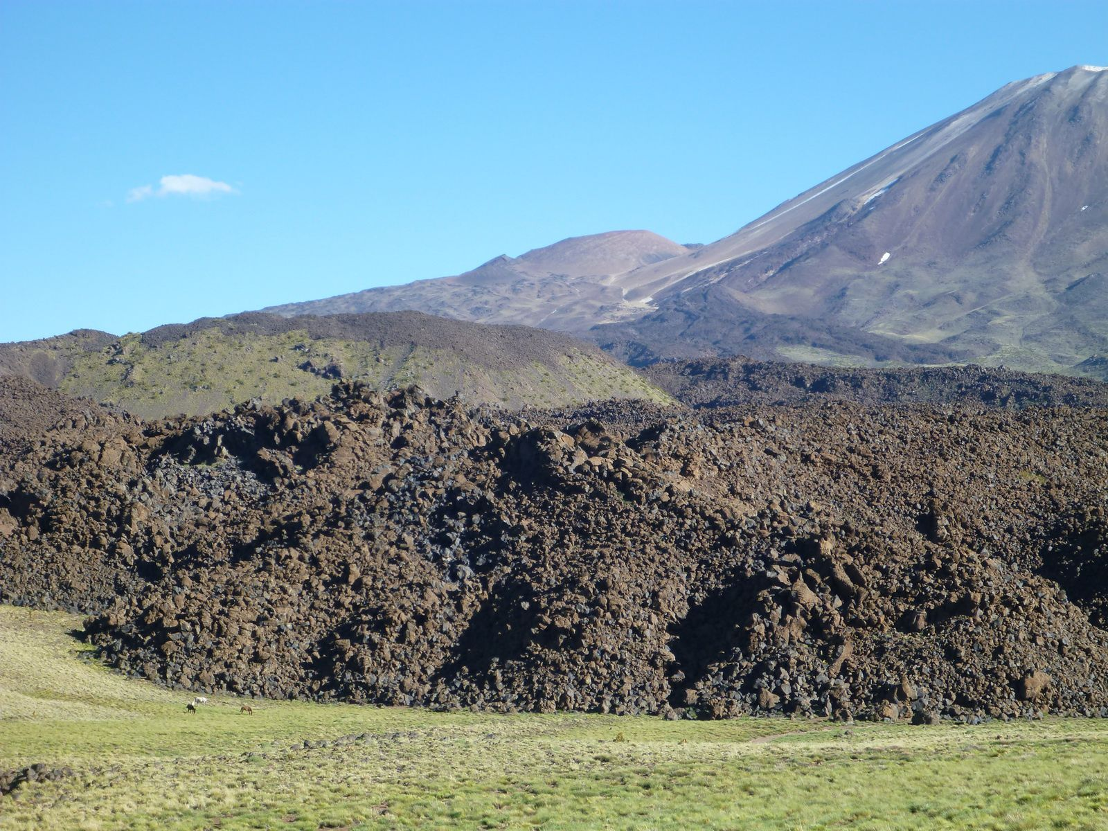 Tromen and recent lava flows / on the left of the photo, three horses for scale -  photo-segovia112001.wordpress.com-2014.01.02-lakes-and-volcanoes-Neuquen-and-rio-negro