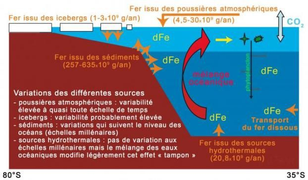 New balance for iron cycling in the Southern Ocean, giving the amounts of dissolved iron (dFe) from different sources. - CNRS
