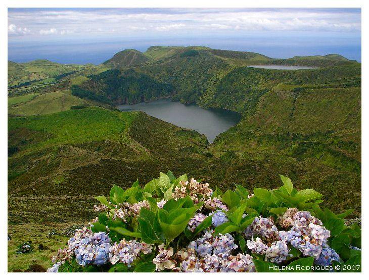 Flores / Açores -  Les Lagoa Funda & Rasa - photo Helena Rodrigues / Açores.net