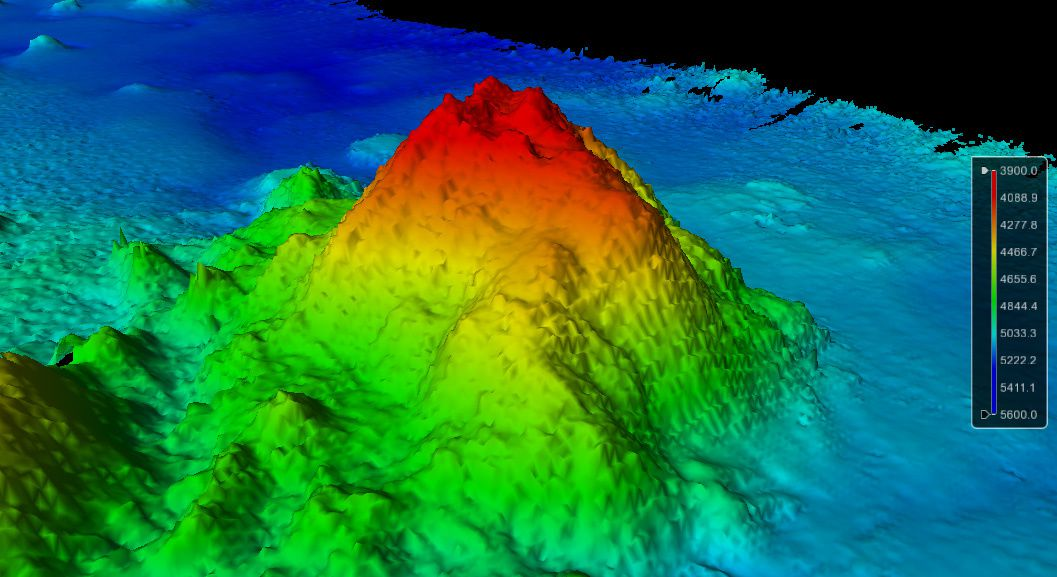 Le nouveau seamount proche de Jarvis Island - doc. Center for Coastal and Ocean Mapping / Joint Hydrographic Center.