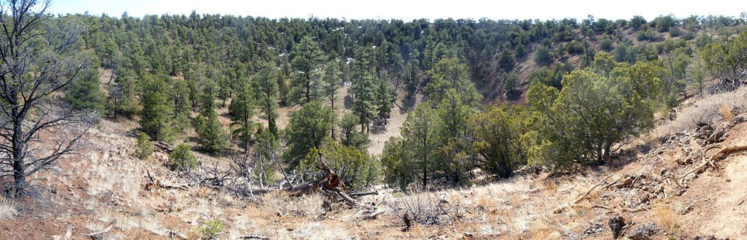 The crater of the cinder cone El Calderon - photo American southwest.