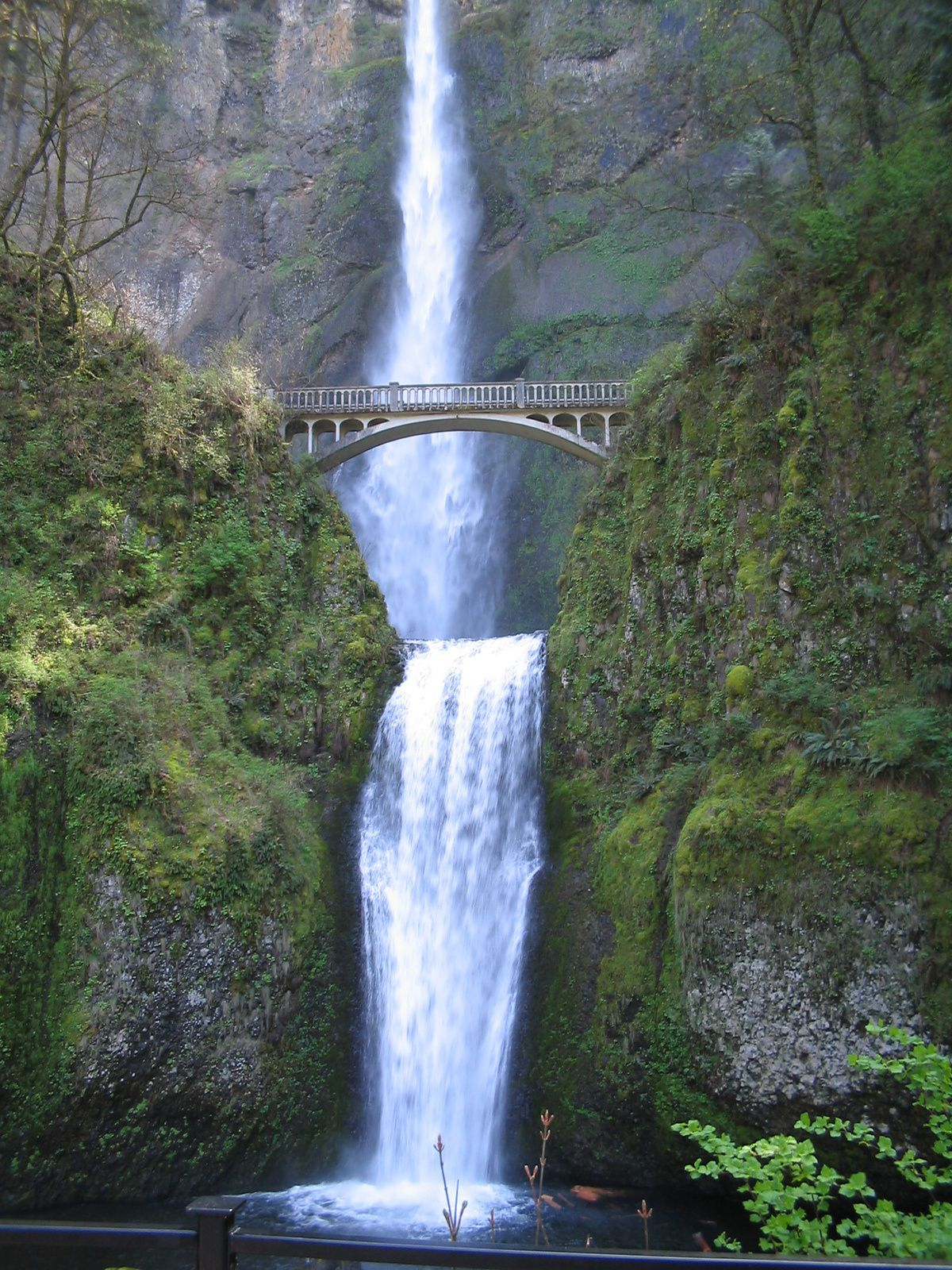 The highest waterfall in the State of Oregon, Multnomah Falls, viewed from the bottom- Lower Falls and part of Upper Falls / Multnomah Falls. photo David Benbennick