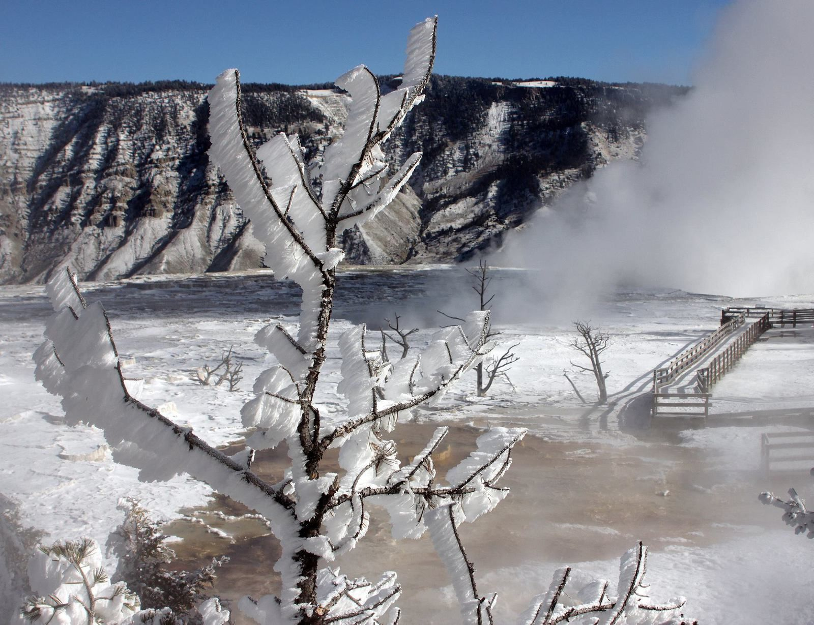 Mammoth Hot Springs sous le soleil hivernal - photo Yellowstone National Park 2014