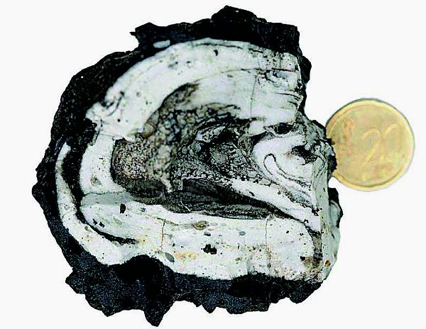 Sample of eruptive material floating on 18.10.2011 off El Hierro - Courtesy of Instituto Geográfico Nacional (IGN).