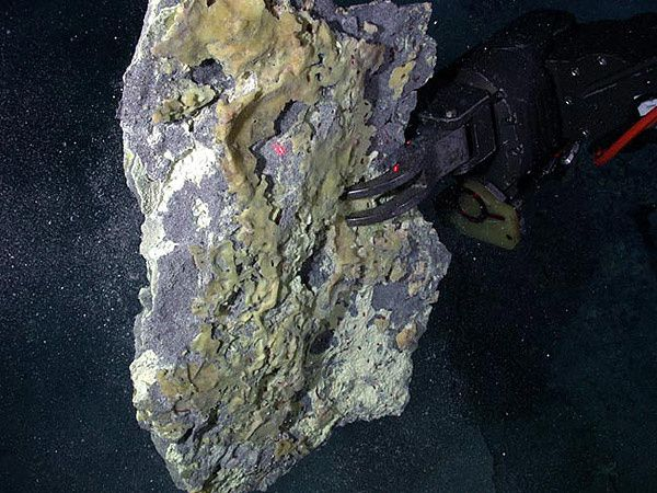 Daikoku seamount - sulfur crust sampled by the ROV Jason in 2006 - Image courtesy of Submarine Ring of Fire 2006 Exploration, NOAA Vents Program