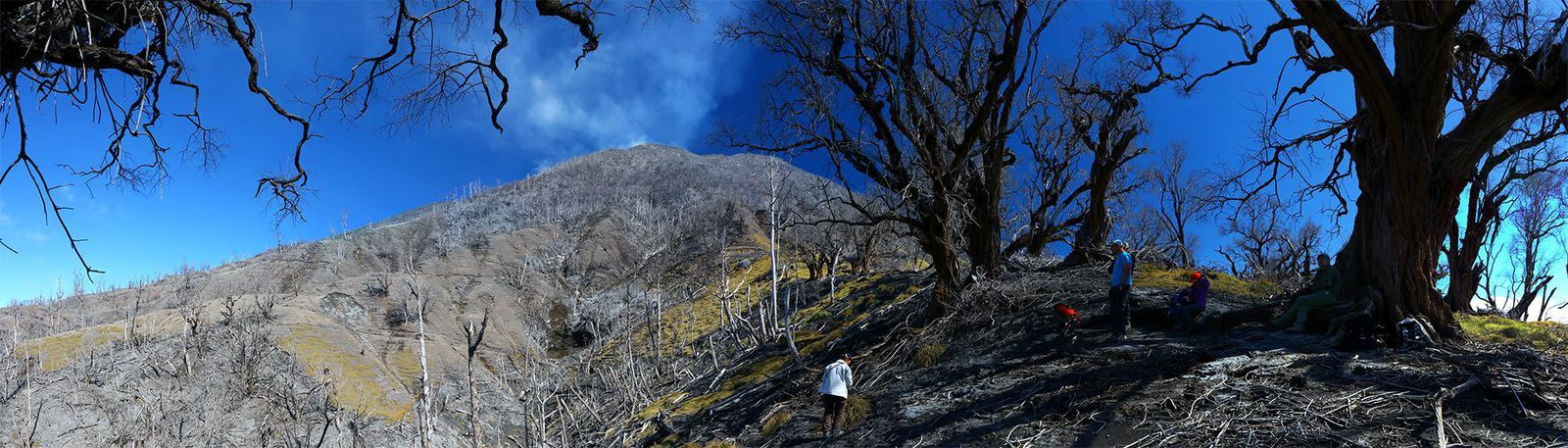Turrialba - a picture of Tanguy de Saint Cyr demonstrates the desolation of this flank of Turrialba - a click to enlarge - Adventure and Volcanoes travel in December 2014.