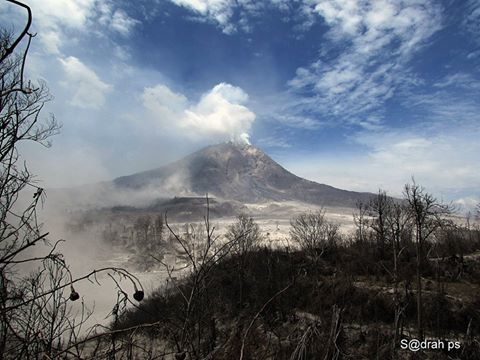 2015.03.06 Sinabung after the big erupsion in Thursday March 5. taken from Sebintun corn field. - Sadrah ps