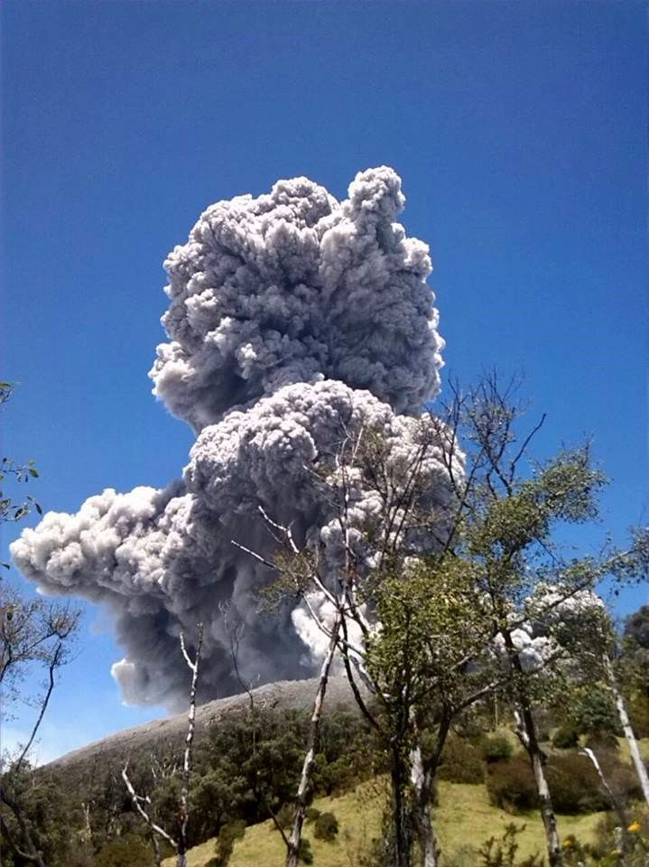 Turrialba : eruptive plume 13 mars 2015 / 10h35 - photo Francisco Arias / RSN