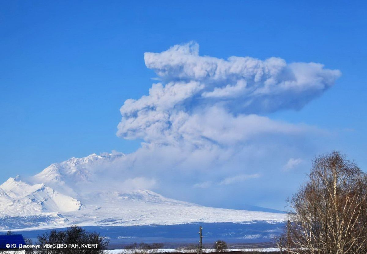 Shiveluch - plume April 11, 2015 - photo Y.Demyanchuk / KVERT