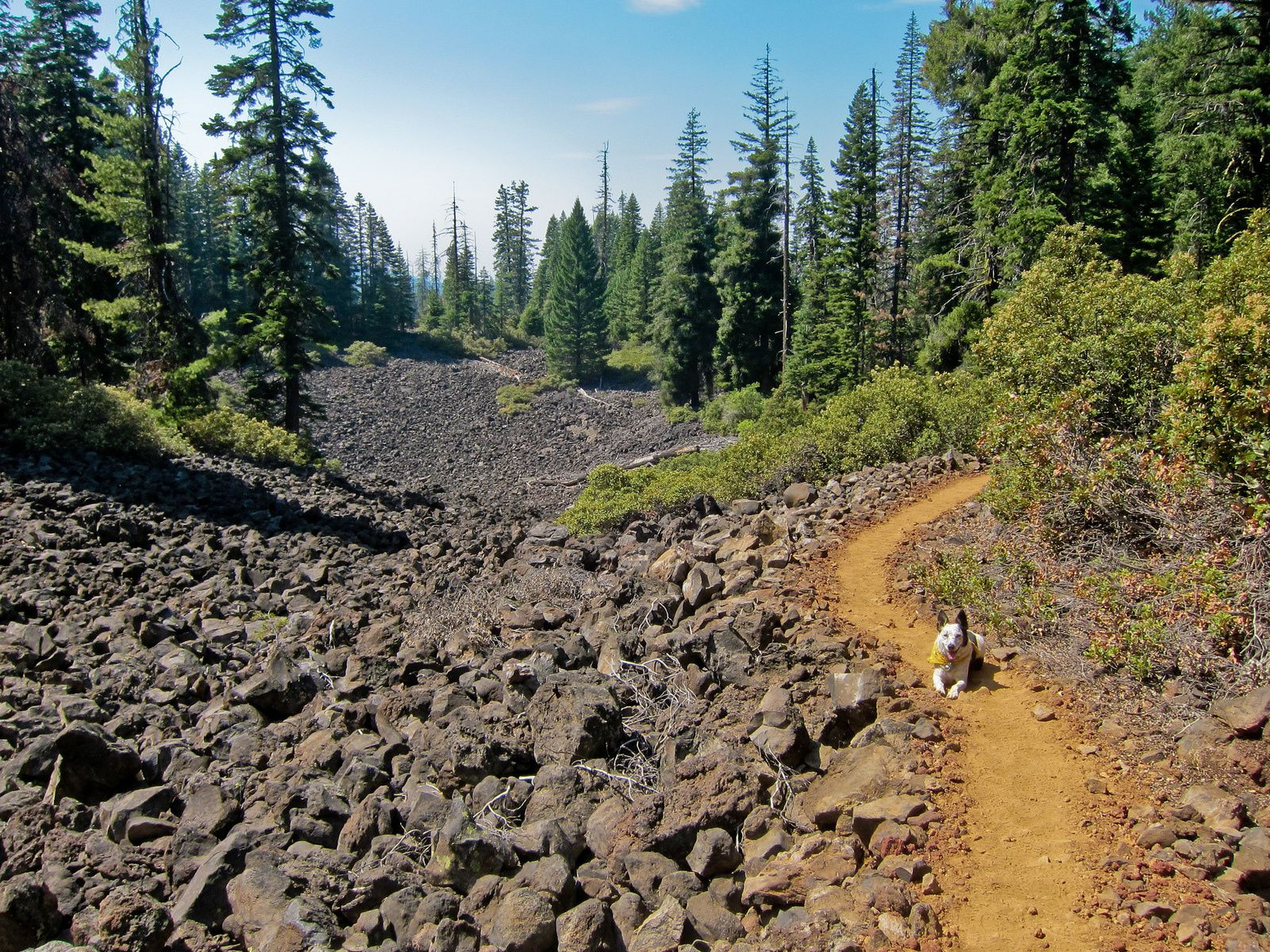 Brown Mountain - Pacific Crest Trail - photo Michael McCullough / Flickr