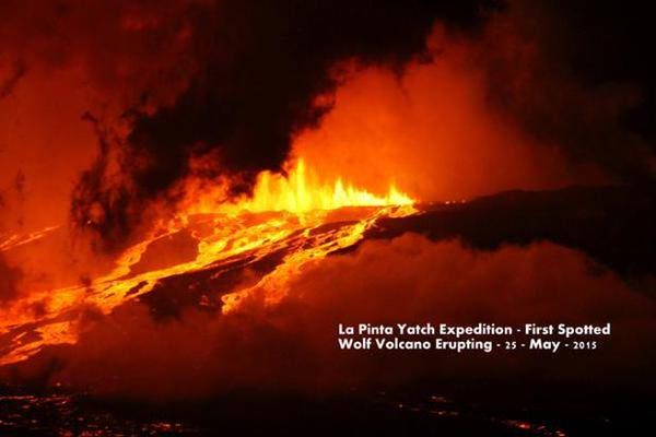 Eruption du volcan Wolf / isla Fernandina (Pta. Espinoza),  - 25.05.2015 - photo La Pinta Yacht expedition via Twitter