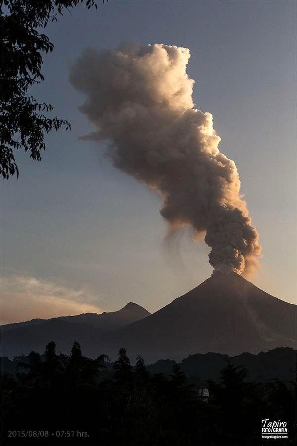 Colima - a beautiful plume on 08.08.2015 / 7:51 - photo Tapiro