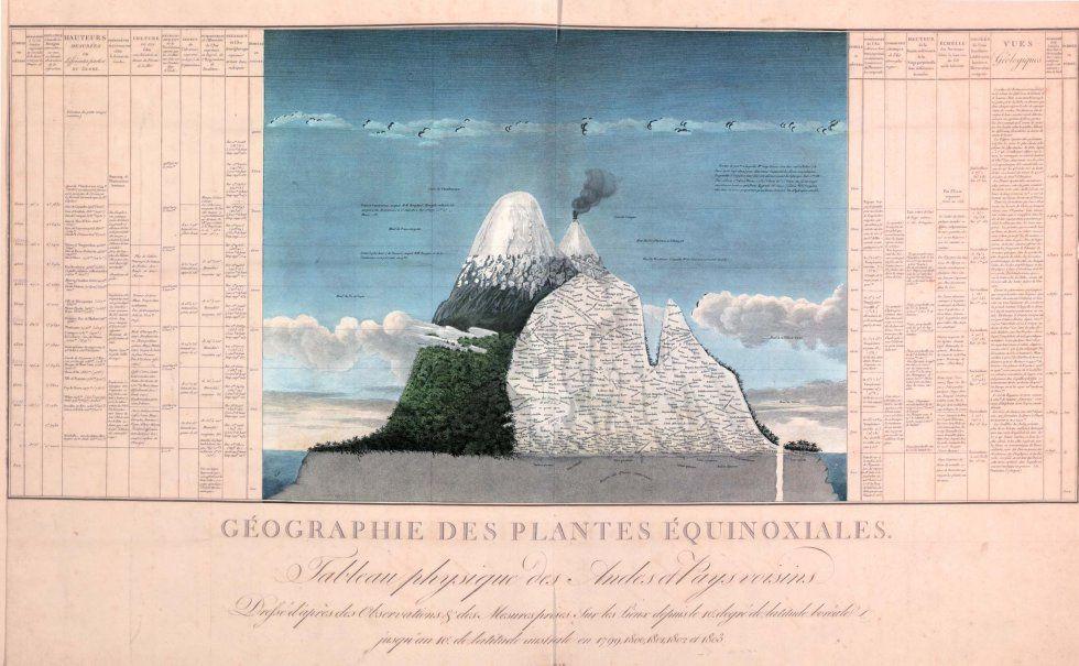 """Planche de von Humboldt : """"Géographie des plantes équinoxiales"""" / de son """"Essai sur la Géographie des plantes""""- 1802"""