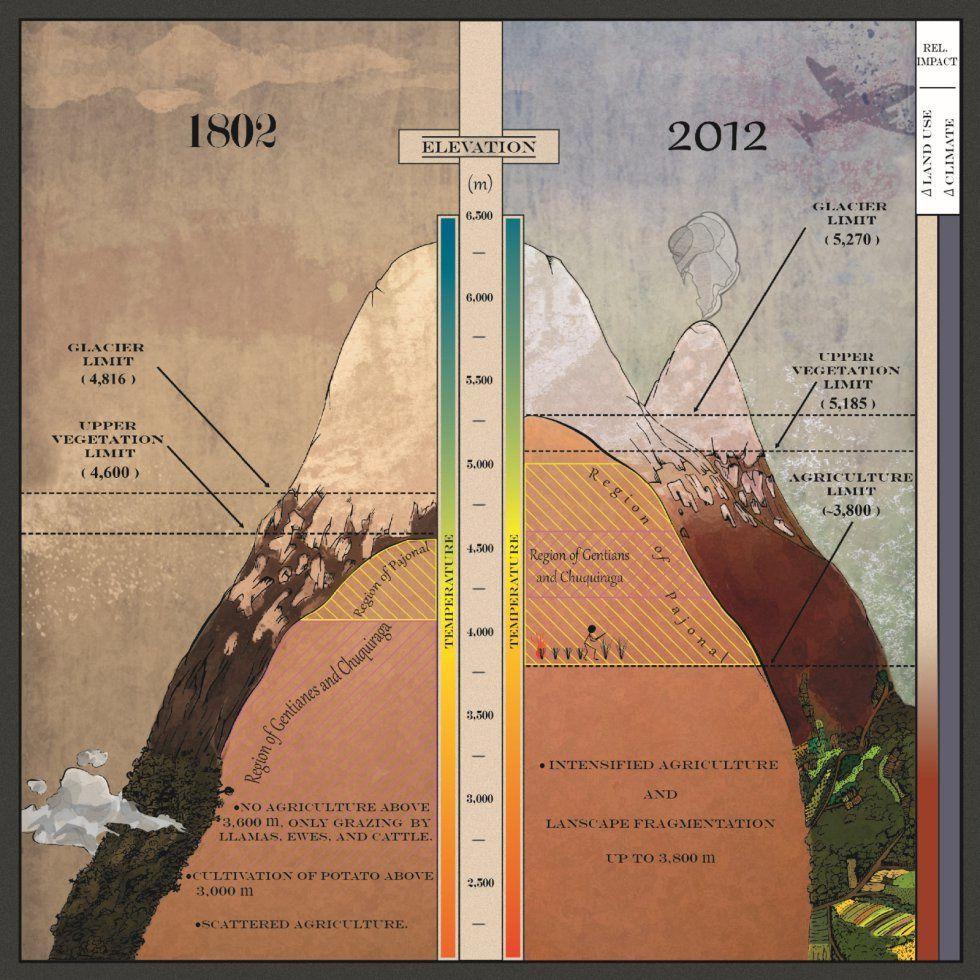 """Illustration dans le style du """" Tableau physique des Andes et Pays voisins """" de von Humboldt montrant la différence de situation du Chimborazo entre 1802 et 2012 – doc. Morueta-Holme & al."""