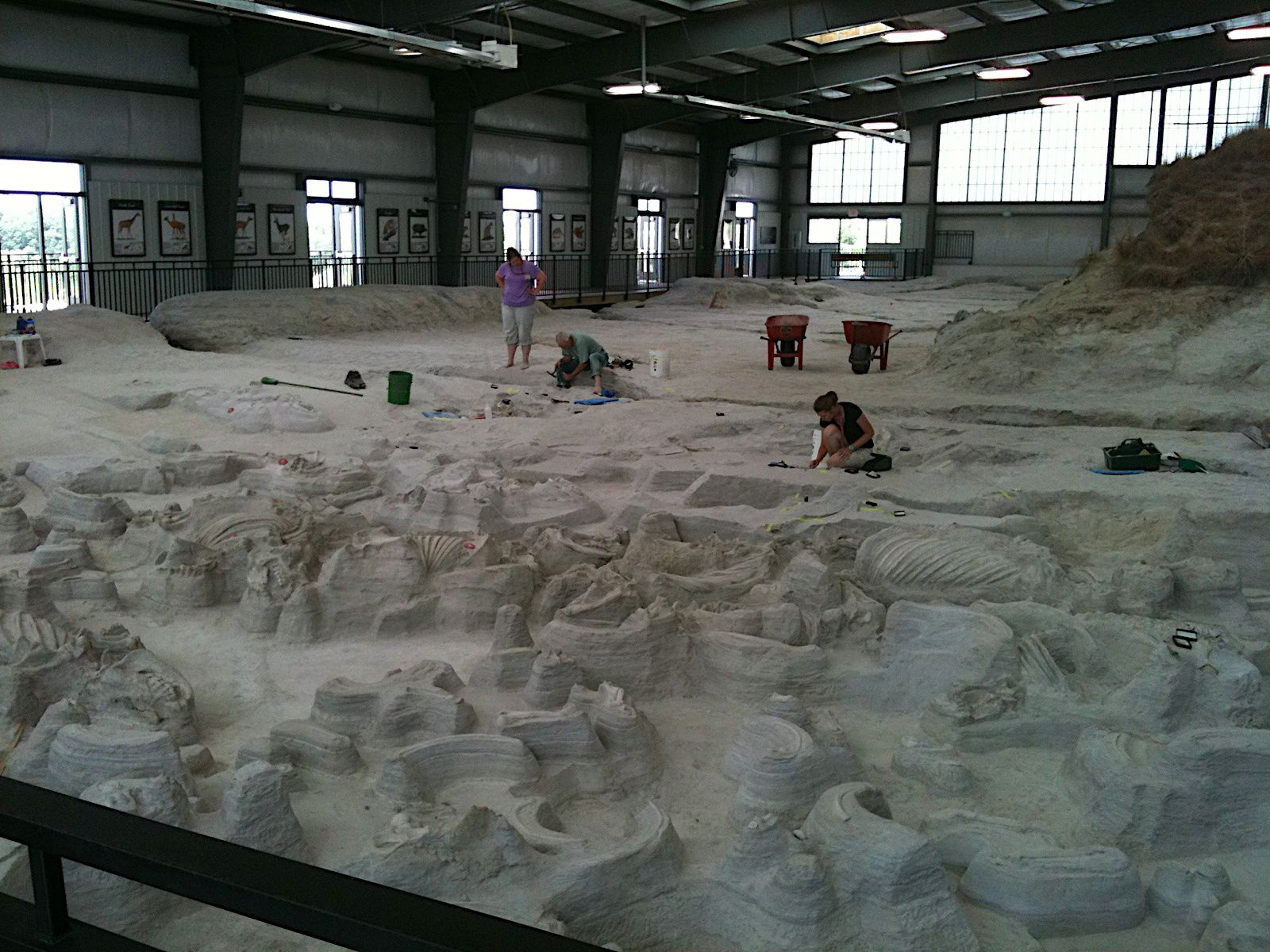 Ashfall Fossil Beds & Fossil Vacations, Royal, Nebraska