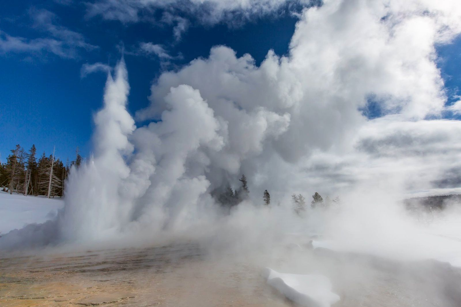 "Yellowstone National Park - "" Les geysers de Thanksgiving "" - photo YNP 26.11.2015"