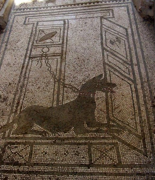 Pompeii - mosaic at the entrance of the house of Proculus Paquius - photo http://locipompeiani.free.fr/