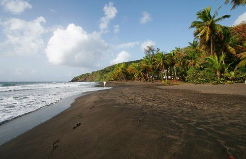 Guadeloupe - black sand beach of Grande Anse - Photo © Fwed - Fotolia