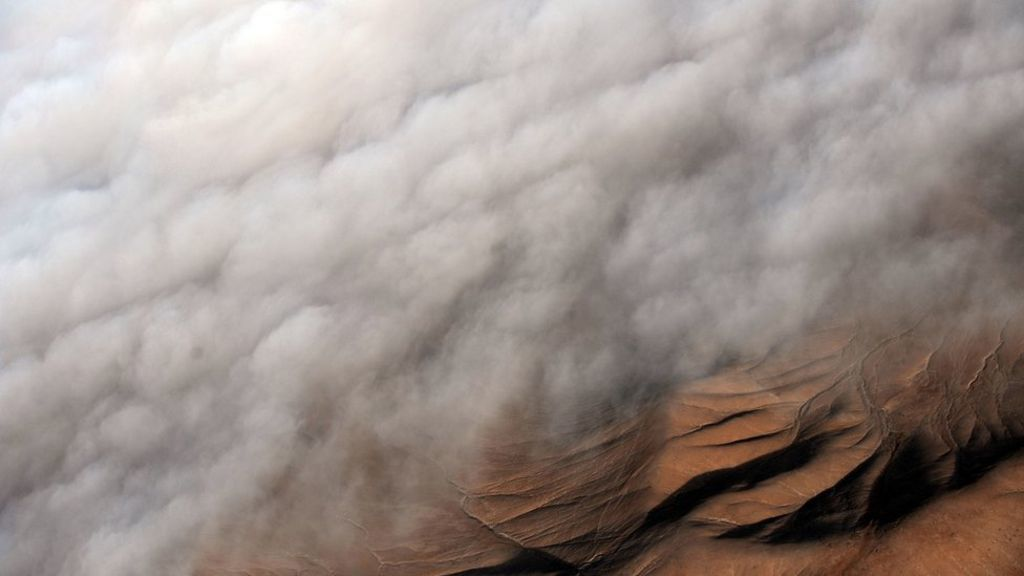 Mists of Atacama - photo BBC / Section Science & Environment