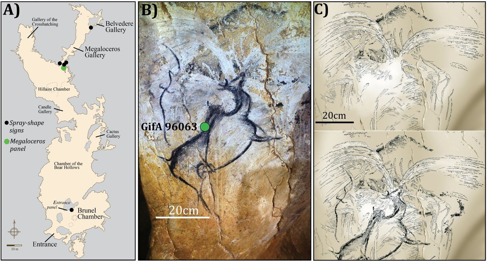 Example of a spray-shape sign from Chauvet-Pont d'Arc cave compared to the oldest known depictions of volcanic eruptions. (A) Map of the Chauvet-Pont d'Arc cave. (B) General view of the Megaloceros panel. The green dot marks the location of the 14C AMS date [8] (picture credit D. Genty). (C) Detail of the Megaloceros panel chronological succession [8] (pictures credit V. Feruglio-D. Baffier). doi:10.1371/journal.pone.0146621.g003