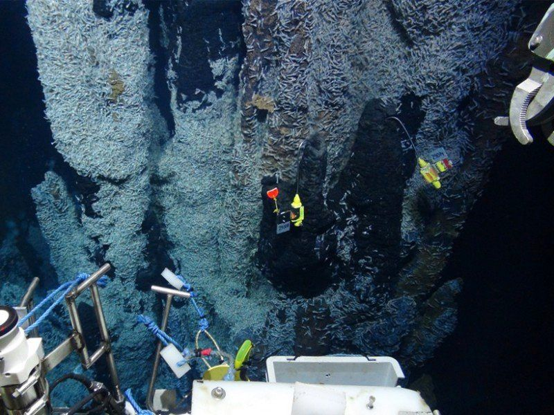 Caribbean Sea - new type of hydrothermal vent - Doc. AGU