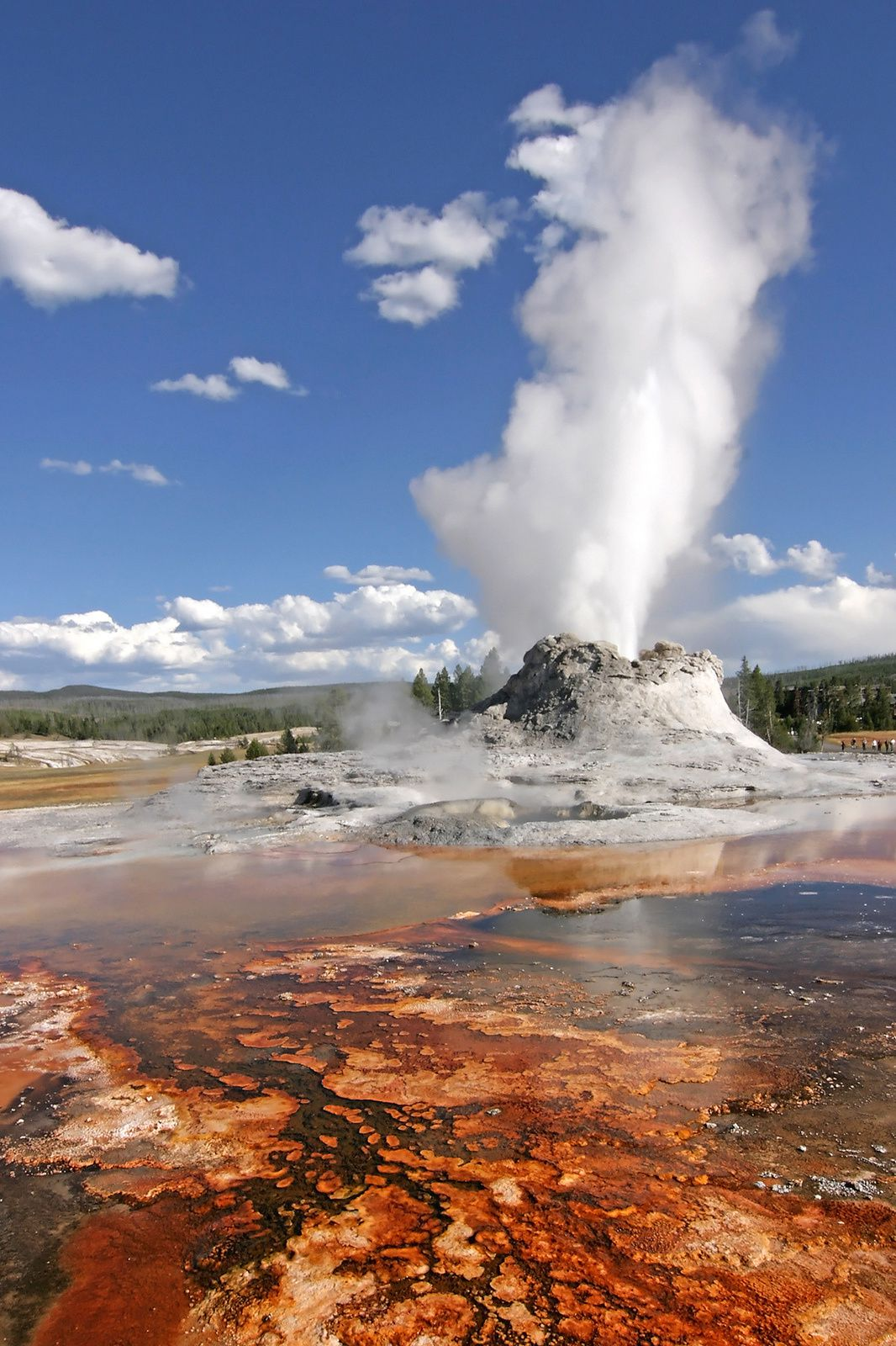 Yellowstone National Park - Upper Geyser Basin - Castle Geyser en éruption en 2007 - photo YNP