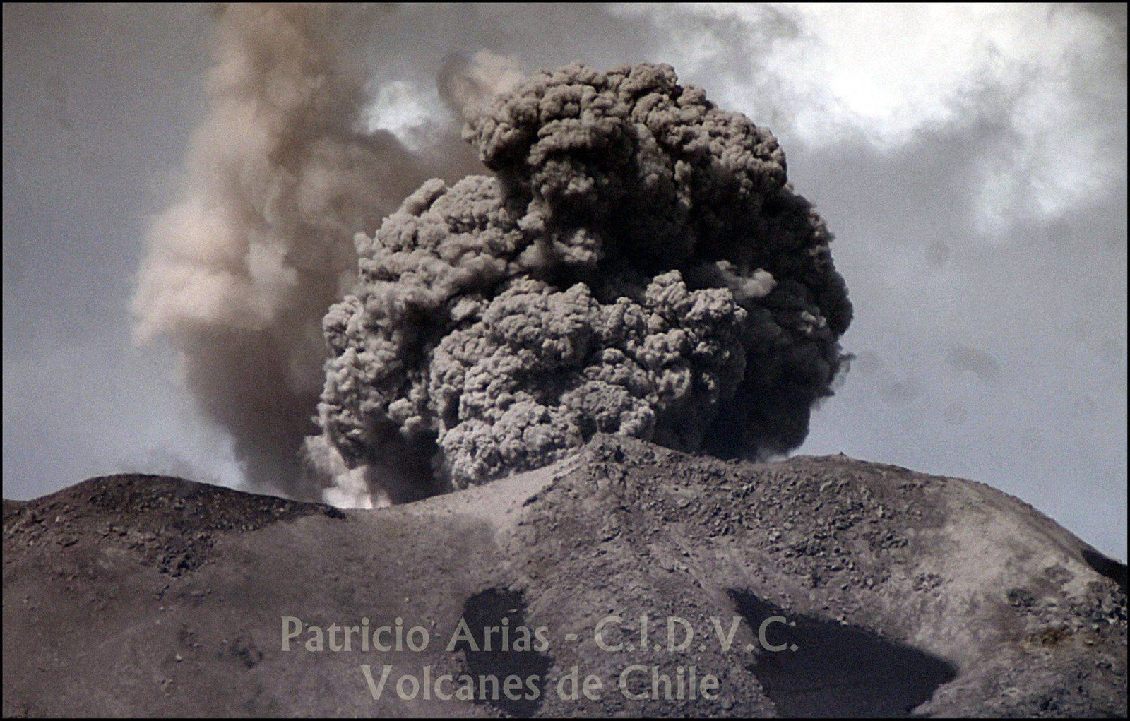 Nevados de Chillan  - panaches doubles le 31 janvier 2016 - photo Patricio Arias / CIDVC Volcanes de Chile