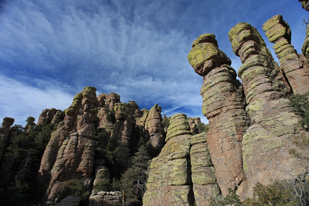 Chiricahua National Monument - Standing Tall  -  photo 50stateorless