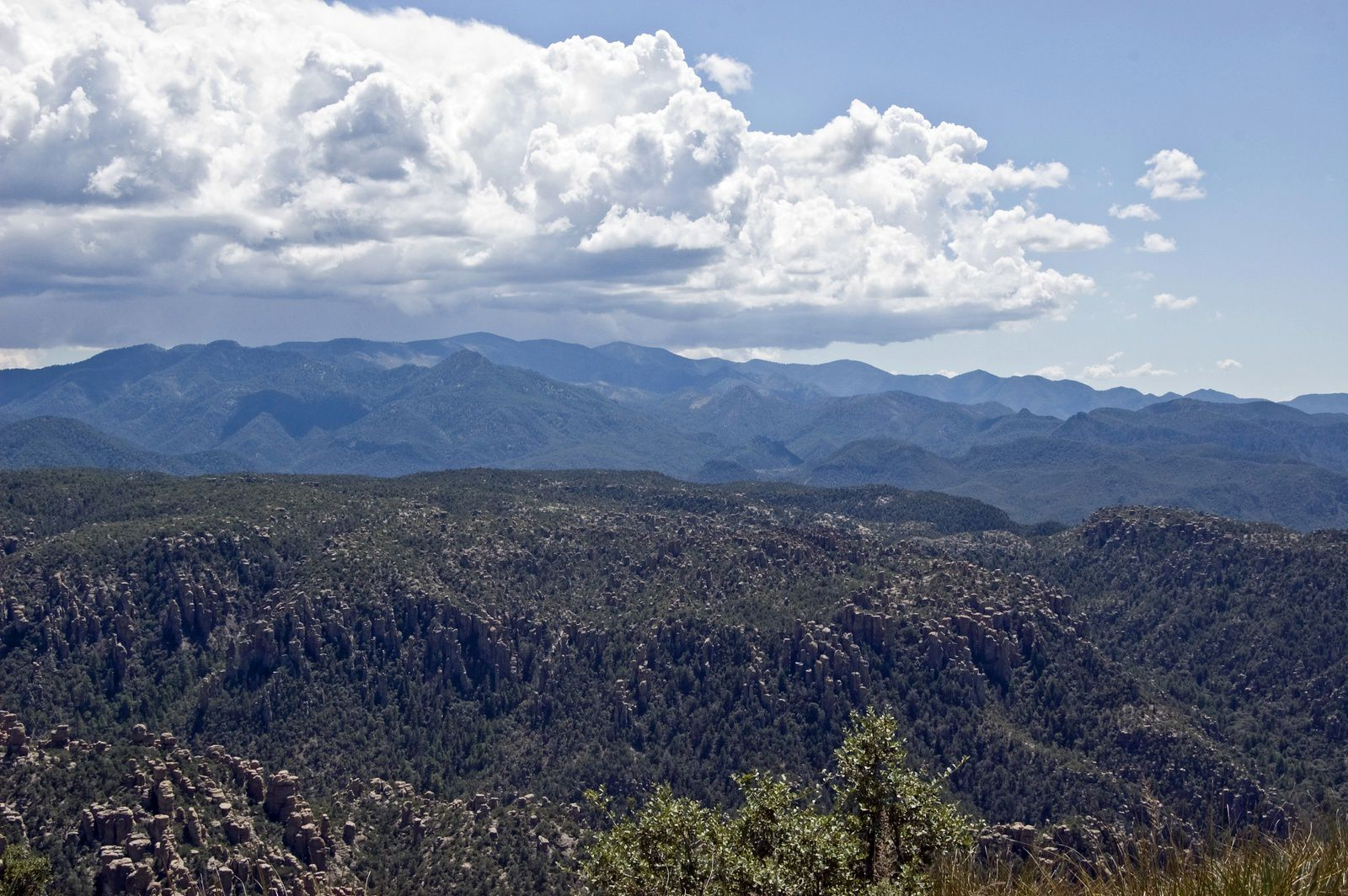 The Chiricahua mountains, with hoodoos in the foreground and the Turkey Creek caldera in the background - photo Ken Bosma