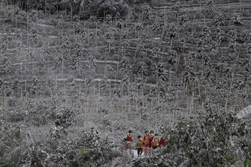 Children go to schools, masked, by a path in the crops ravaged by the ashes of Sinabung - photo Jakarta Post 01.2015