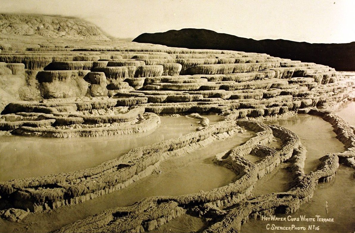 White terraces - photo C. Spencer, 1880.
