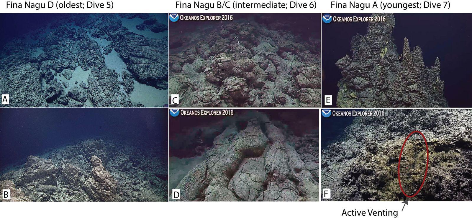 Plancher océanique photographié au cours des plongées 5 à 7 : La paroi nord de la caldeira D est composée de pillow lava fracturés et sédiments clairs (photo A) ainsi que de dykes (photo B) – La dorsale entre les caldeiras B et C est constituée de pillow lava bien conservés (photo C), dont certains forment des tubes le long des pentes (photo D) – Le dôme de résurgence Est de la caldeira A présente une grande cheminée hydrothermale éteinte (sommet en photo E), et un léger flux hydrothermal sur le dôme ouest (photo F) - Image courtesy of NOAA Office of Ocean Exploration and Research, 2016 Deepwater Exploration of the Marianas