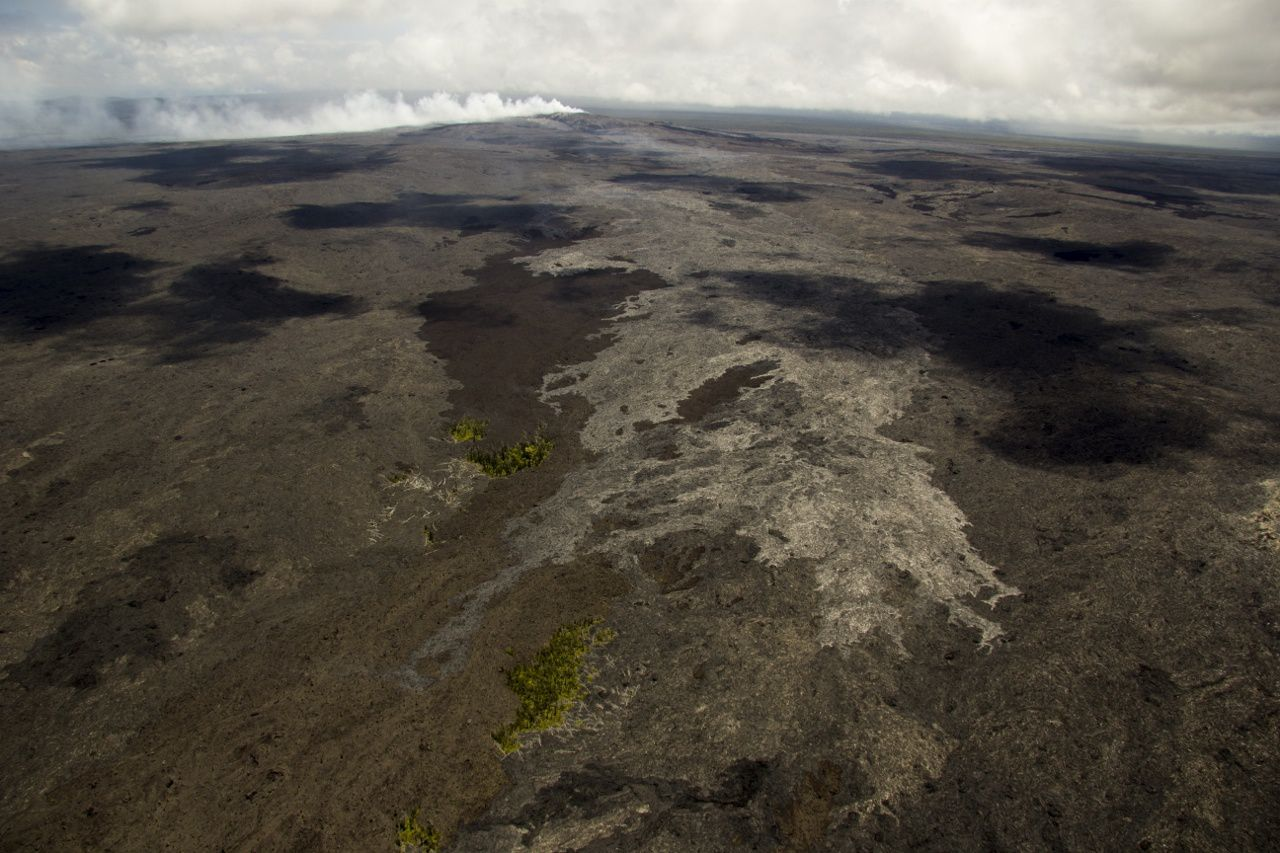 Advanced lava flows of 16 June towards the ocean&#x3B; green areas are still intact kipuka&#x3B; the plume of Pu'u O'o is visible on top of the photo. -doc. HVO