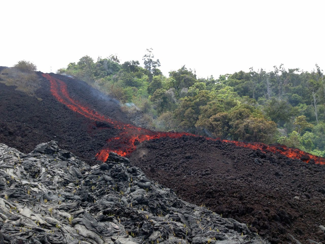 Pu'u O'o -  The 29.06.2016's lava a'a flow front was supplied by a narrow channelized section on the steep portion of the pali. &#x3B; in the foreground, lava pahoehoe - photo HVO