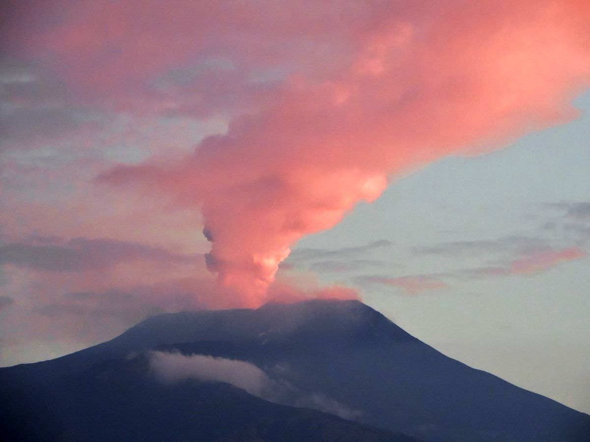 Etna Voragine - the plume of August 8th / morning, illuminated by the rising sun - photo Boris Behncke