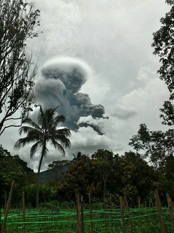 Sianbung - violent explosion on 30/08/2016 and a plume topped with a pileus - photo Teger Tiganderket via Komunitas Beidar Sinabung