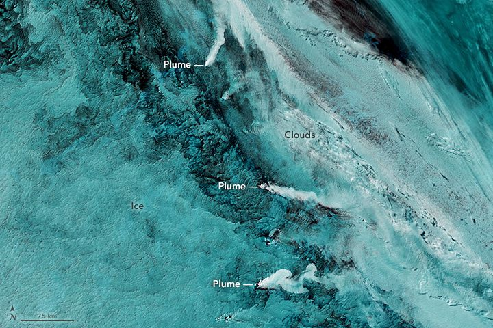South Sandwich Islands - volcanic plumes trio spotted by Aqua MODIS / NASA on 09.29.2016