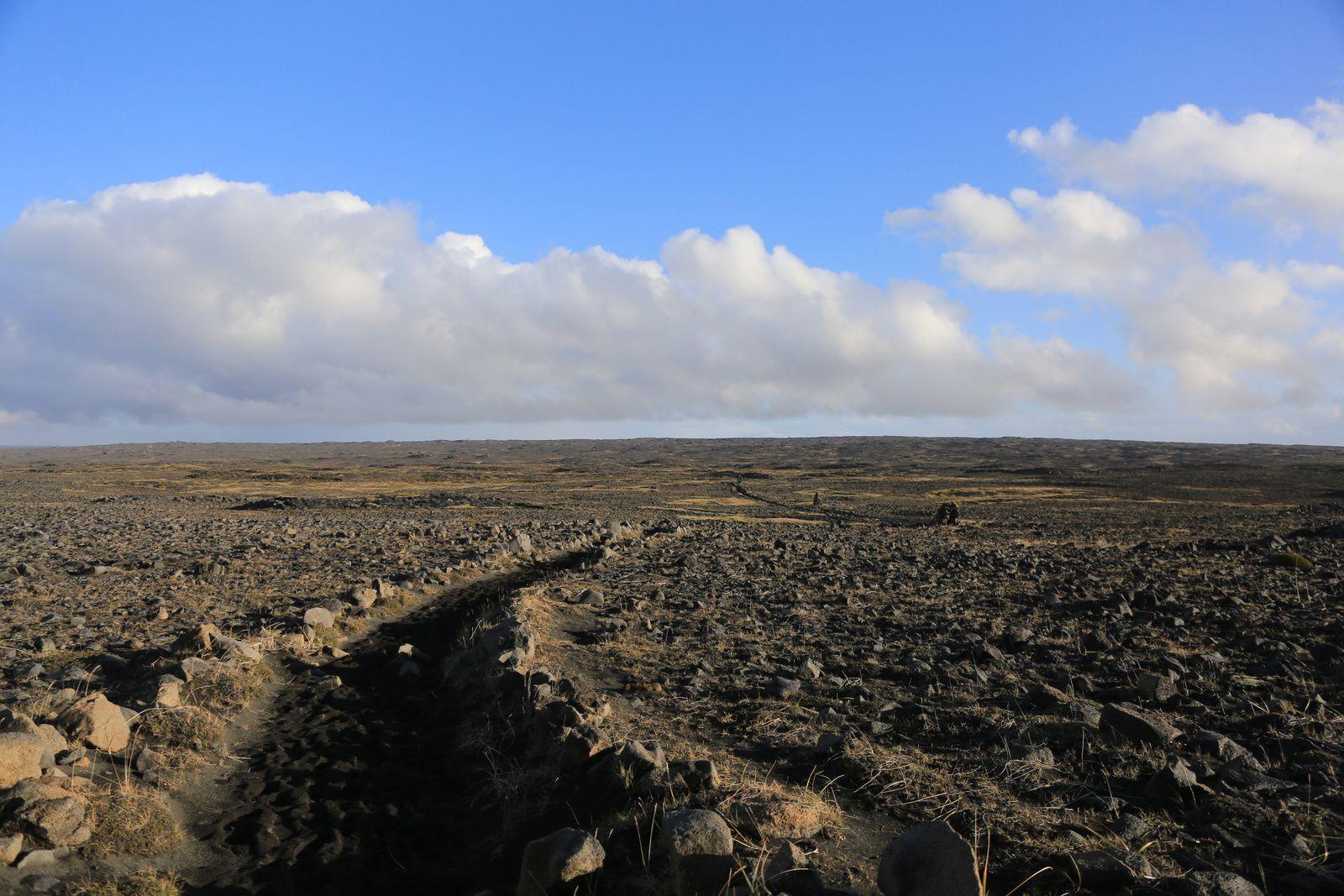 L'immense champ de lave Bergholl à traverser pour arriver aux falaisese d'Hafnaberg ... ne pas s'éloigner du sentier et des cairns sous peine de se perdre - photo © Bernard Duyck 10.2016