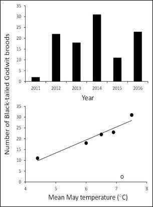 Reproduction rate of black-tailed Godwit vs spring temperature - doc. Effects of spring temperature and volcanic eruptions on wader productivity. - Tómas Grétar Gunnarsson & al.