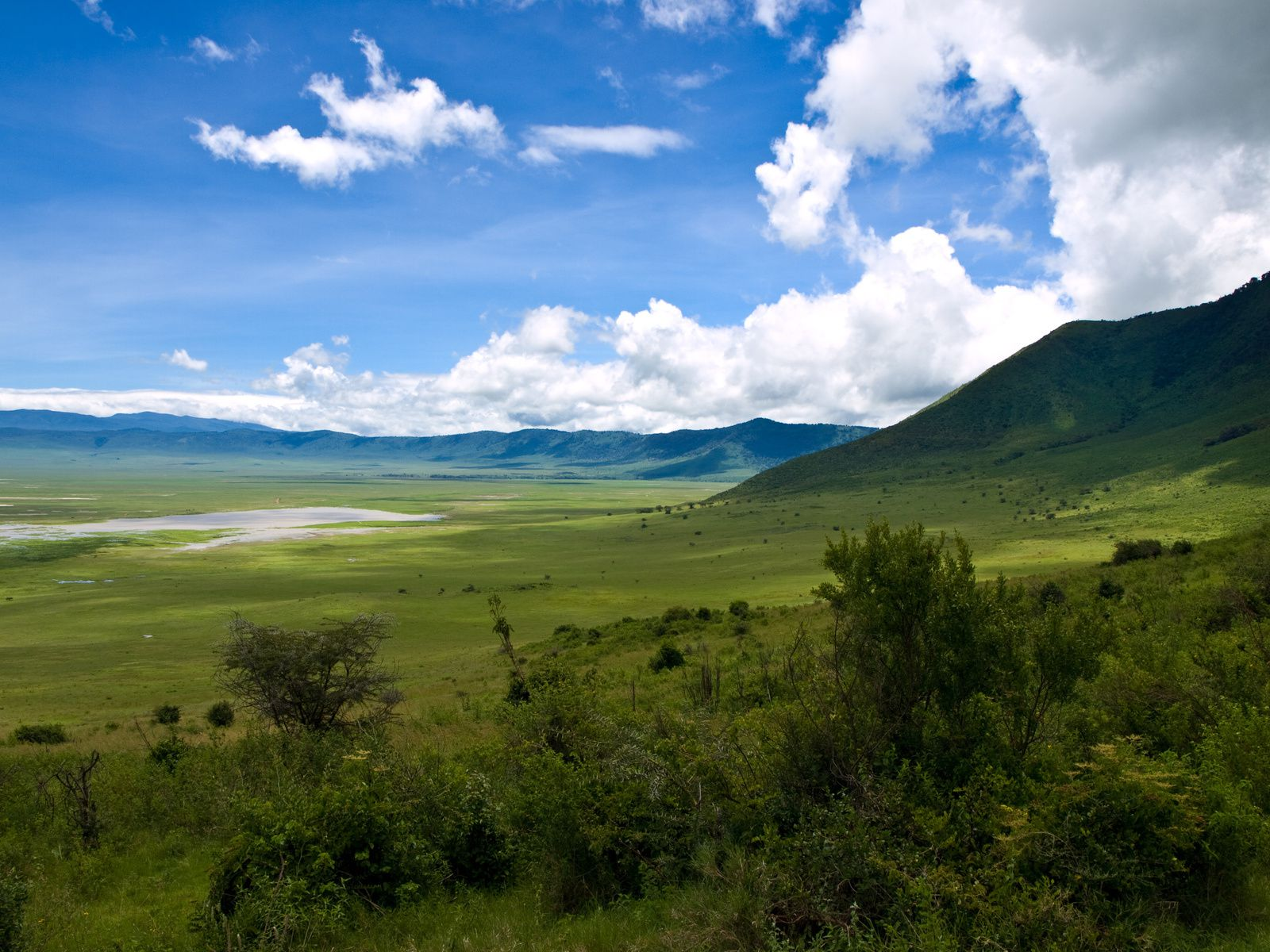 Ngorongoro Conservation Area. - Ngorongoro crater - photo William Warby / London, England