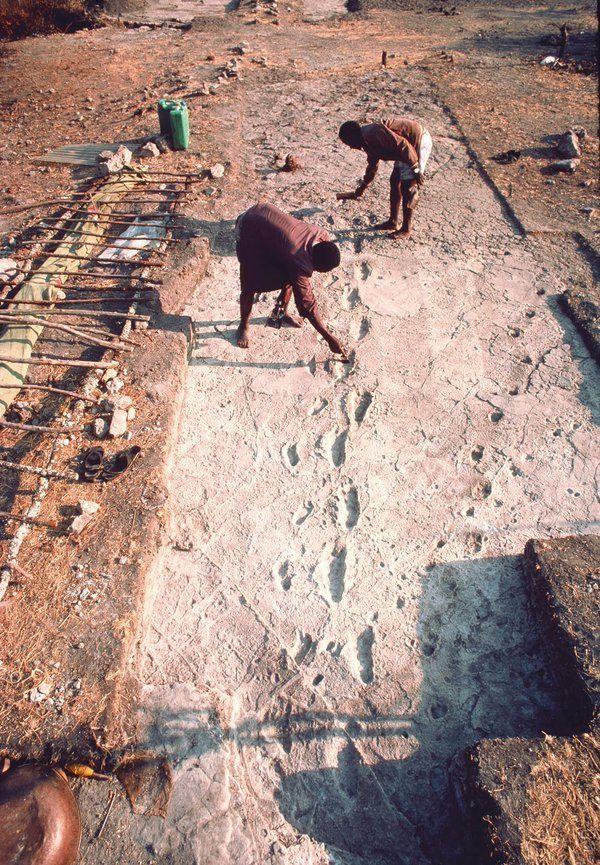 Empreintes de pas de Laetoli sur le terrain et moulage - doc. Smithsonian et elifesciences