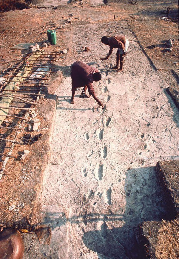 Laetoli footprints on the terrain and molding - doc. Smithsonian and elifesciences